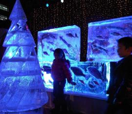 氷のイベント